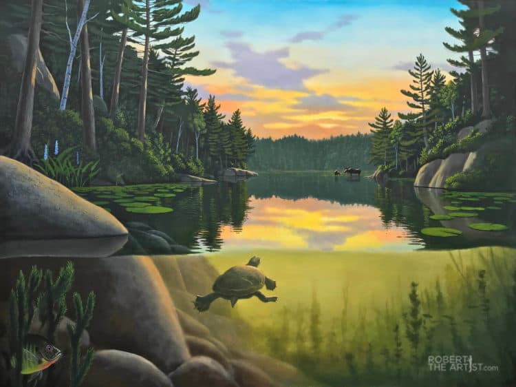 Original Oil Painting of a painted turtle swimming in a Muskoka lake by Robert Johnson