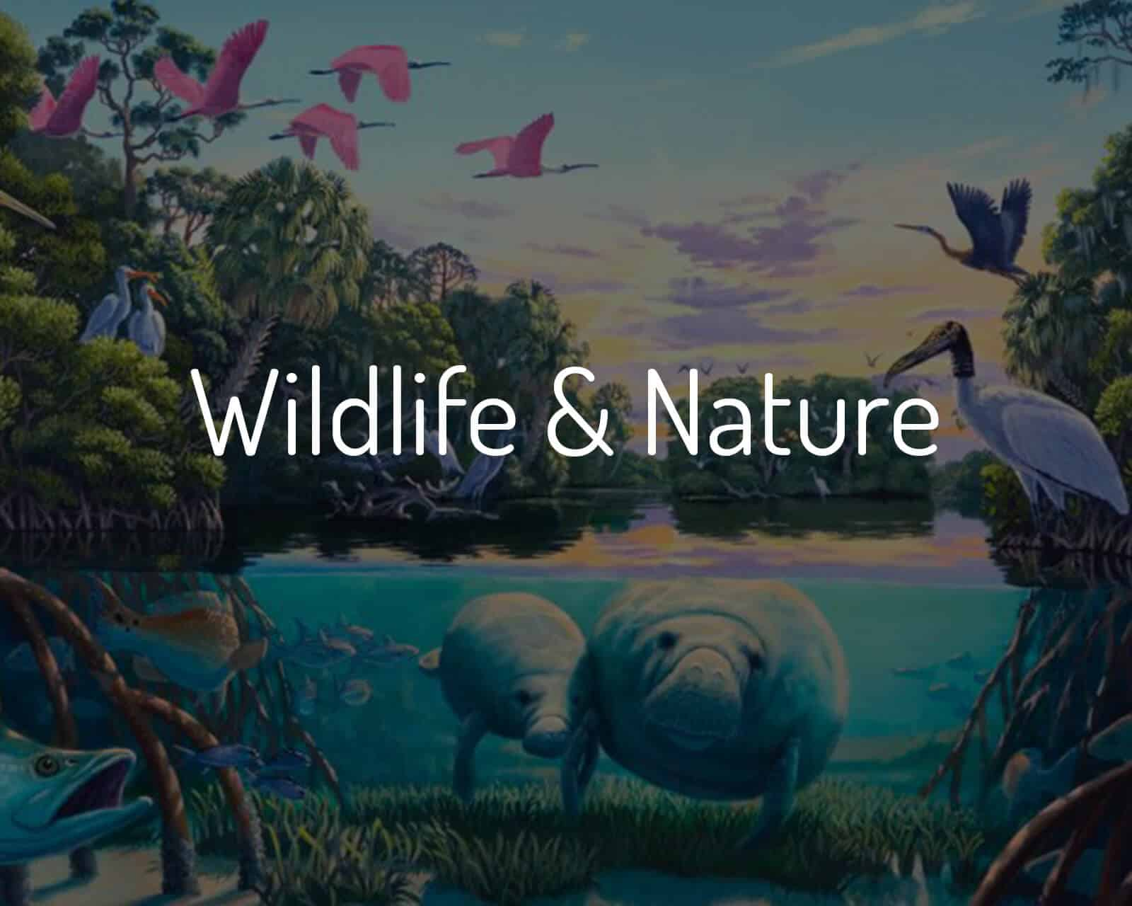 Shop Wildlife & Nature Paintings