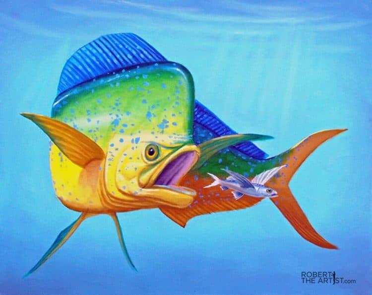Mahi Mahi or dolphin fish painting by Robert Johnson