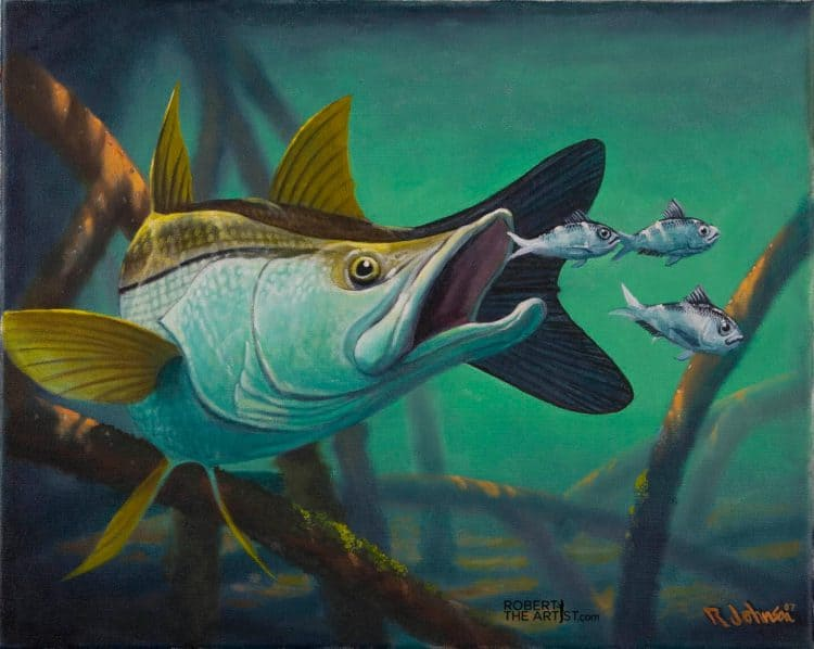 Painting of a snook by Robert Johnson
